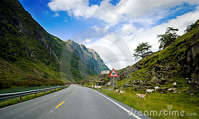 Car trip sight, Norway.