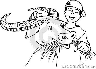 Carabao Feeding