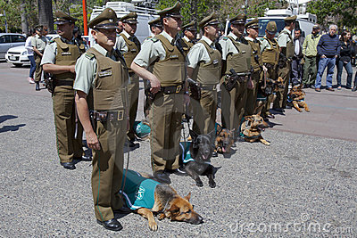 Carabineros Parade with dogs Editorial Photo