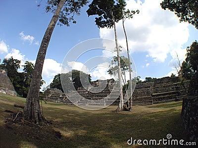 Caracol archeological site