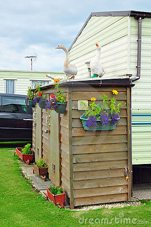 Caravan camp, shed, flowers, geese figures