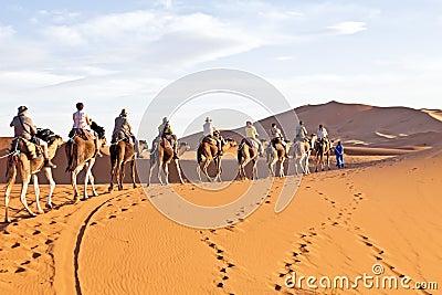 Caravane de chameau passant par les dunes de sable Photo stock éditorial