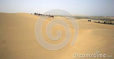 Caravans in deserts