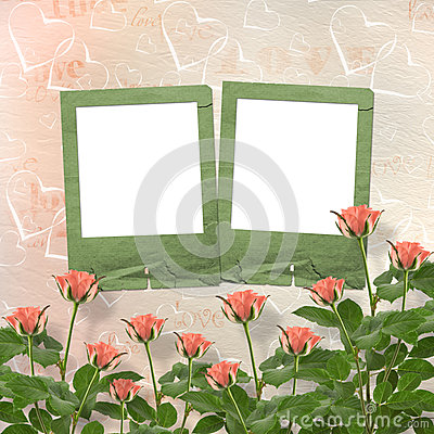Card for congratulation with frames and pink roses