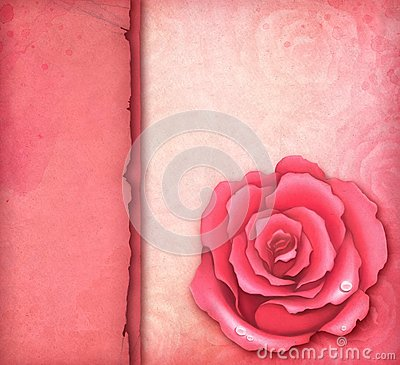 Card with pink rose