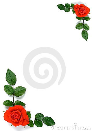 Card with roses and leaves