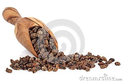 Cardamom Seed