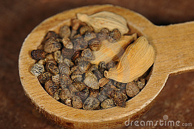 Cardamom Seeds Stock Photography - Image: 21324642