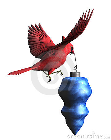 Cardinal with Christmas Ornament - with clipping path