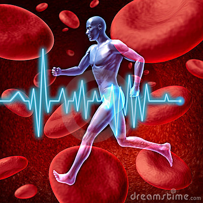 Cardiovascular Circulation Royalty Free Stock Images - Image: 21440289