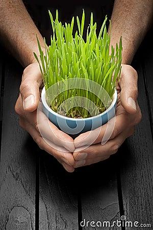 Life Sustainability Responsibility