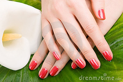 Care for woman hands