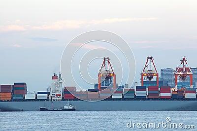 Cargo sea port. Sea cargo cranes