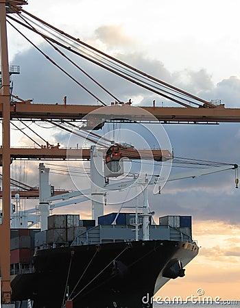 Cargo Series 1