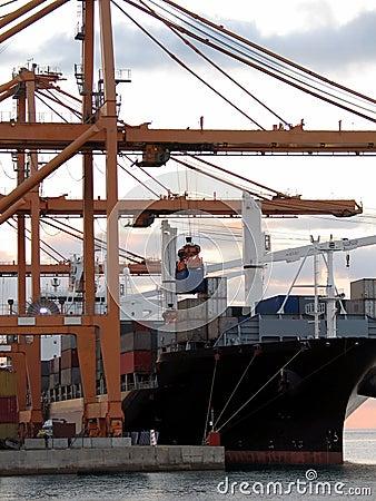 Cargo series 4
