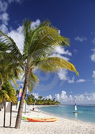 Free Caribbean Beach Stock Images - 833434