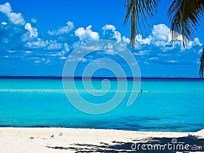 Caribbean Beach. Mexico