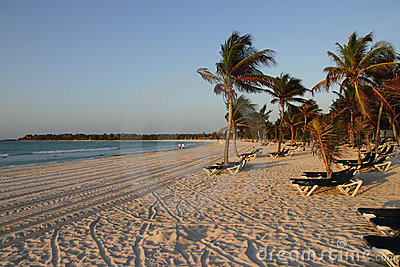 Caribbean beach with palms and chairs