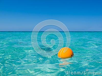 Caribbean Buoy