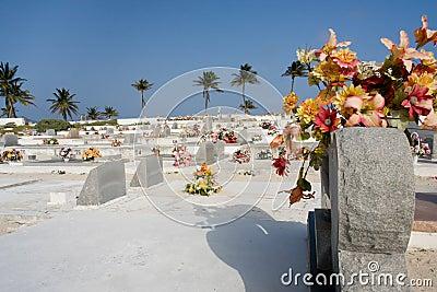 Caribbean cemetery