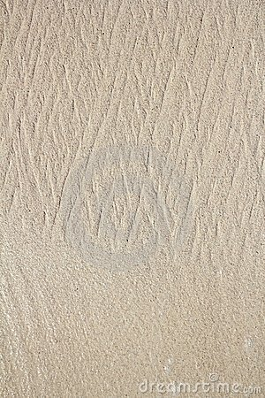 Caribbean clear beach sand texture shore