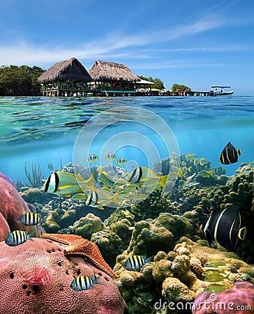 Free Caribbean Dreams Royalty Free Stock Images - 22001229