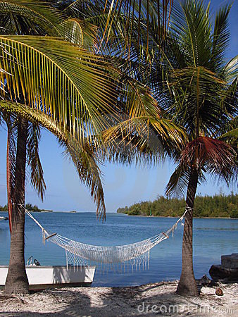 Free Caribbean Hammock Royalty Free Stock Images - 2612209