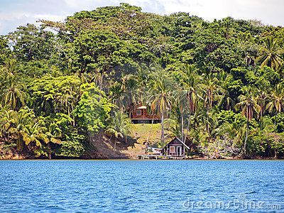 Caribbean houses with cononuts trees