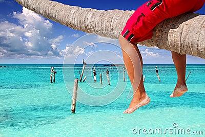 Caribbean inclined palm tree beach tourist legs