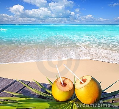Free Caribbean Paradise Beach Coconuts Cocktail Royalty Free Stock Photography - 19161377