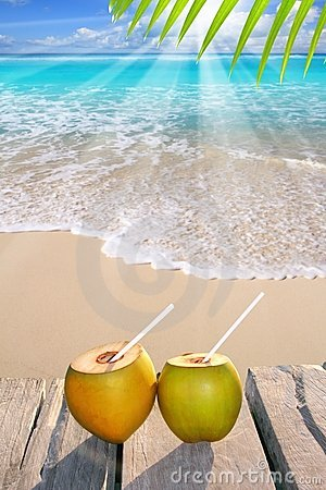 Free Caribbean Paradise Beach Coconuts Cocktail Royalty Free Stock Image - 19161396