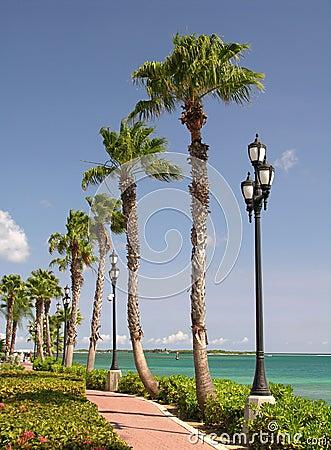 Caribbean Promenade
