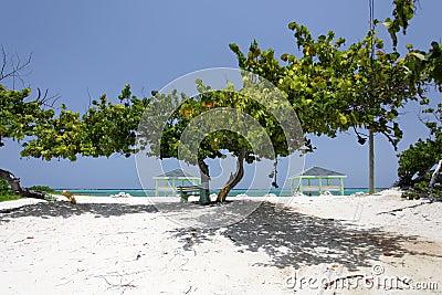 Caribbean public beach