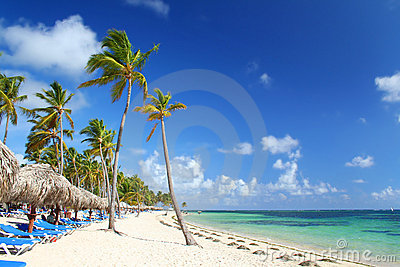 Caribbean resort beach with umbrellas and chairs