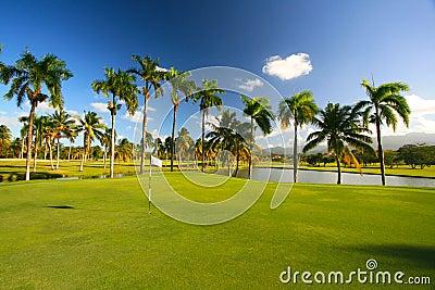 Caribbean Resort Golf