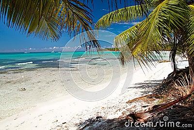 Caribbean sea lagoon