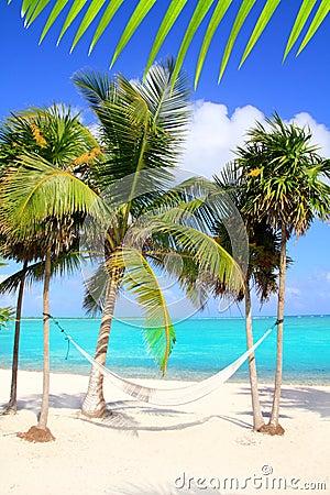 Free Caribbean Sea With Swing Hammock Turquoise Beach Royalty Free Stock Photo - 19164645