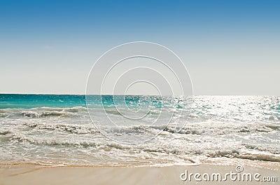Caribbean Shoreline