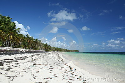 Caribbean tropical beach