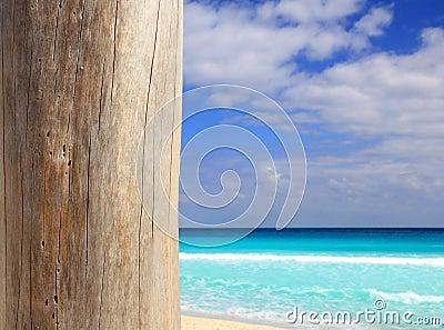 Caribbean tropical beach wood weathered pole
