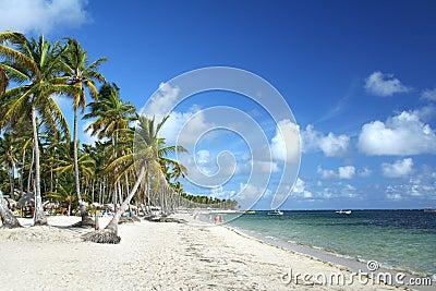 Caribbean tropical resort beach