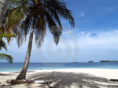 Caribbean tropical white sand beach