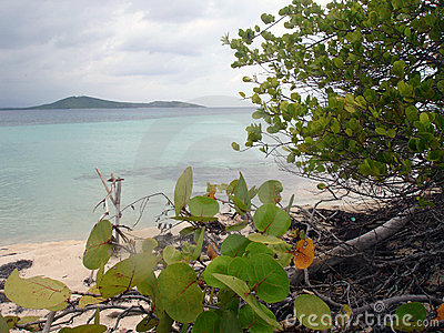 Caribbean view from Beach, Puerto Rico
