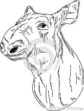 Cariboo portrait