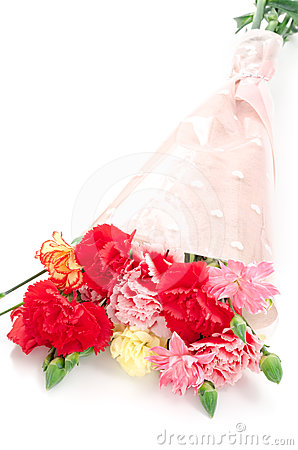 Free Carnation Bouquet Royalty Free Stock Photo - 24401975