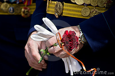 Carnation in the hands