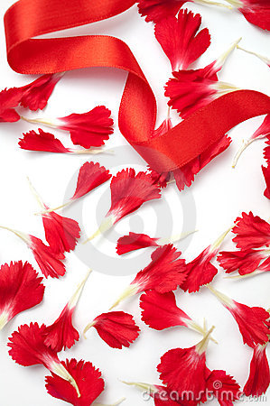 Carnation petals with red ribbon