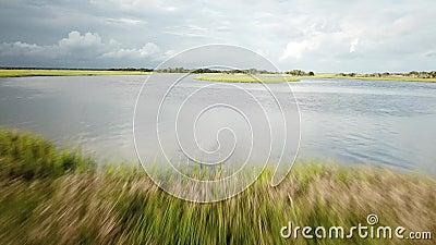 Carolina Tidal Creek Marsh du nord clips vidéos