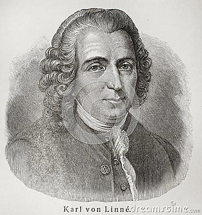 Carolus Linnaeus Editorial Photo