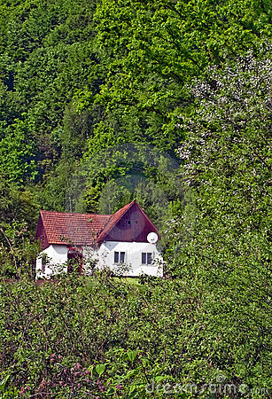 Carpathian cabin 2